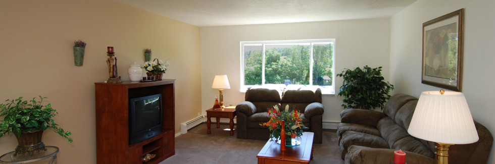 Living Room at Winchester Place Apartments